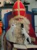 Sinterklaas 2012/2013/2015_51